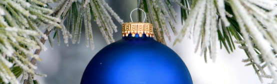 Holidays Shine Bright in North Bend