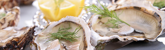 Enjoy Oysters Before It's Too Late - Quality Inn & Suites Coos Bay